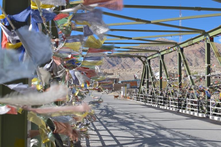 bridge india